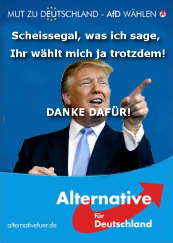 Afd Donald Trump